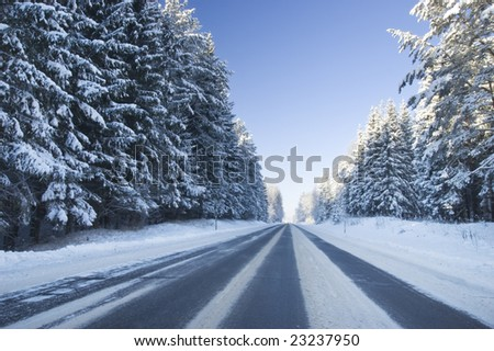 Frozen trees and snowy land road at winter, deep blue sky - stock photo