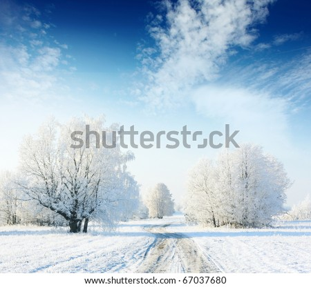 Frozen trees in field with road and blue sky with clouds - stock photo
