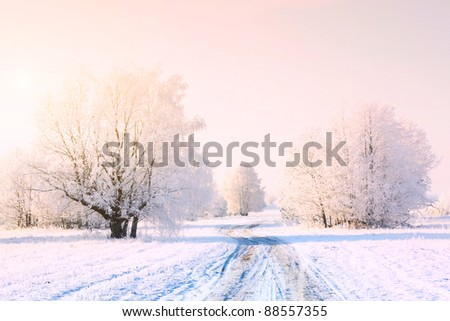 Frozen trees in snowy field with road and clear sky - stock photo