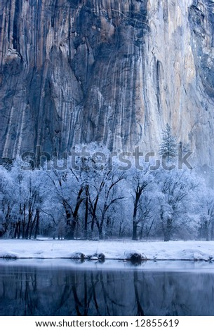 Frozen Trees Under El Capitan - stock photo