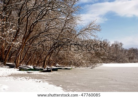 Frozen trees with lake and boats
