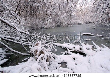 Frozen wetland in a forest of nRock Cut State Park, Illinois - stock photo