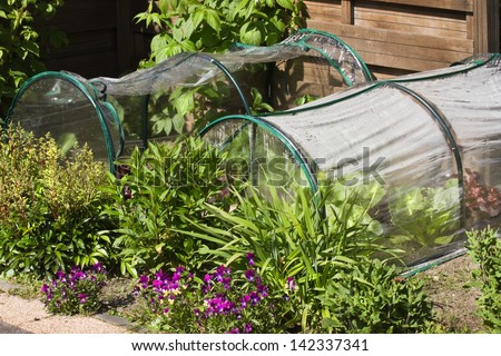 Fruit- and grocery plants in small greenhouses to cultivate by children in a corner of the garden - stock photo