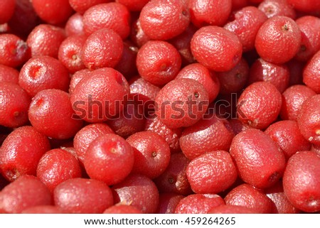 Fruit background. Japanese silverberry. Red ripe summer berries.