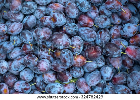 Fruit background, plums at a local market - stock photo