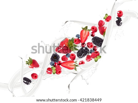 Fruit, berry mix in milk splash, isolated on white background - stock photo