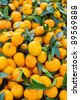 Fruit orange closeup Useful as background for design-works. - stock photo