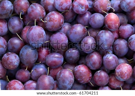 Fruit   plums  blue - stock photo