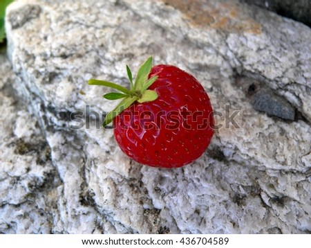fruit red ripe strawberry lying outdoors on a stone - stock photo