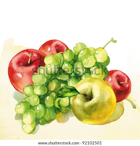 fruit, watercolor painting on white background - stock photo