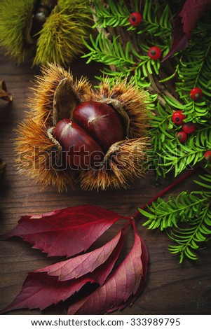 fruits and autumn vegetation