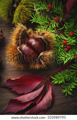 fruits and autumn vegetation - stock photo