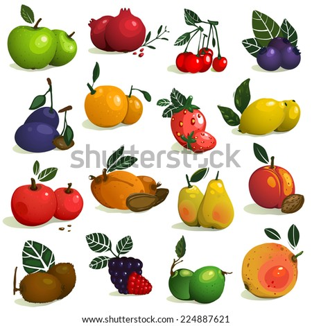 Fruits and Berries Collection. Big set of ripe fruits. Raster variant. - stock photo