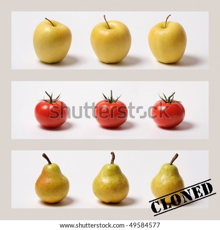 Fruits and vegetables...all identical! - stock photo