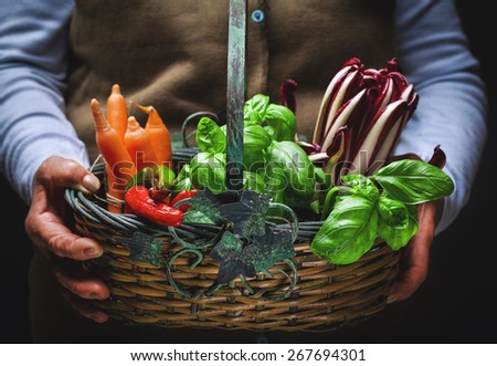 fruits and vegetables in basket - stock photo