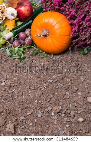 Fruits and vegetables with pumpkins in autumn, concept