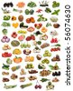 Fruits, nuts, vegetables and spices  isolated on a white background. - stock photo