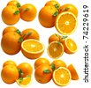 Fruits oranges - stock photo