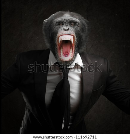 Frustrated Monkey In Business Suit Isolated On Black Background - stock photo