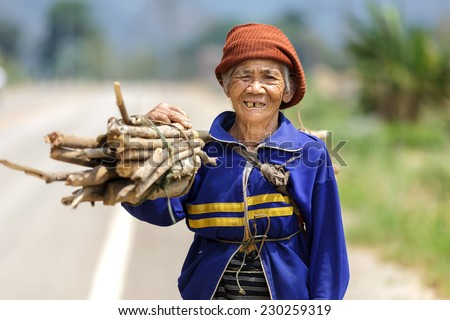 FU CHI FA, THAILAND, MARCH 4, 2011: A senior woman farmer is carrying a stick bunch in the countryside in Fu chi fa, north Thailand - stock photo