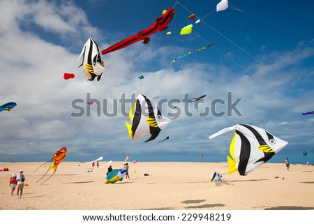 FUERTEVENTURA, SPAIN - NOVEMBER 08: Viewers watch from the ground as multicolored kites fill the sky at 27th International Kite Festival, November 08, 2014 in Dunes of Corralejo, Fuerteventura, Spain - stock photo