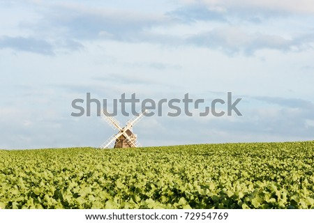 Fulbourn windmill in Cambridgeshire, England - stock photo