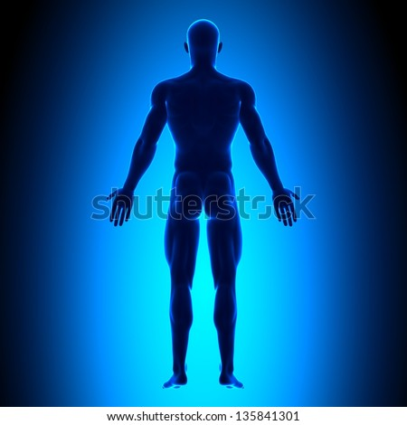 Full Body - Back View - Blue concept - stock photo