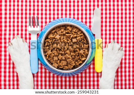 full dog food bowl with knife and fork on tablecloth,paws of a dog - stock photo