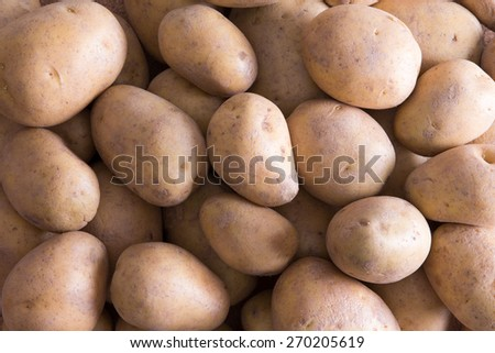 Full frame background of whole raw farm fresh golden potatoes for a delicious nutritious vegetable accompaniment - stock photo