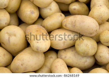 full frame background with lots of potatoes