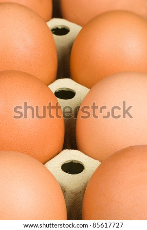Full frame detail take of  packaged eggs