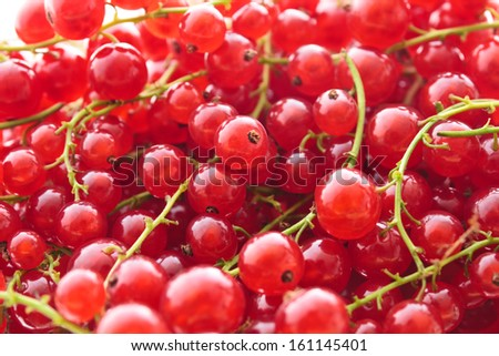 Full frame image of a heap of red currant. Small depth of field - stock photo