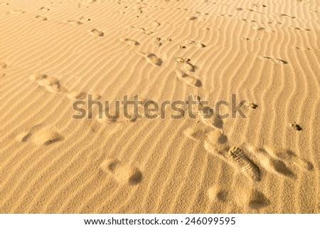 Full frame take of many footprints on golden sand - stock photo