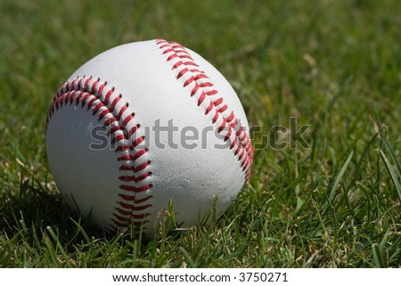 Full grain leather cover baseball on the grass