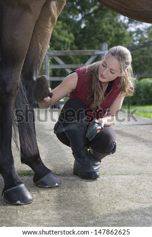 Full length of a woman grooming horse's leg outdoors - stock photo