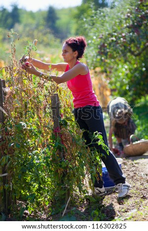 Full length portrait of a young woman working in her garden - stock photo