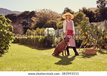 Full length portrait shot from a low angle of a smiling senior woman, looking at the camera with her faithful dog sitting beside her, and lemon tree heavy with ripe fruit in her backyard - stock photo