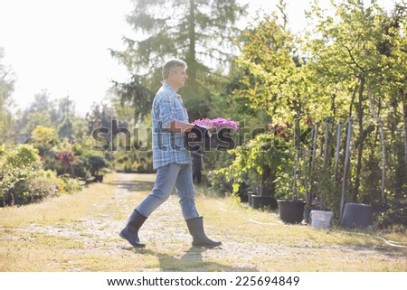 Full length side view of gardener walking while carrying crate of flower pots in garden - stock photo