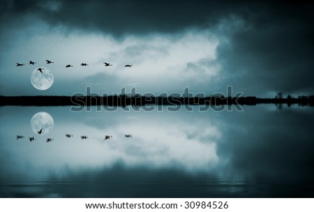 Full moon and flying birds reflecting in water - stock photo