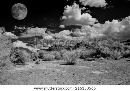 Full moon in the Arizona Sonora desert - stock photo