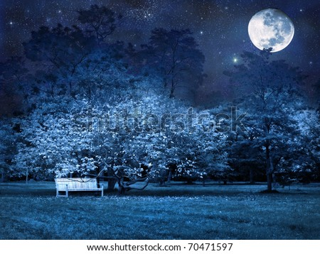 Full moon mystic night in park - stock photo