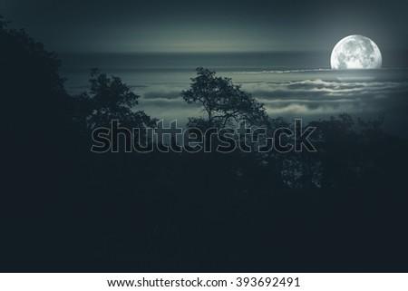 Full Moon Night. Moon Light Above Foggy Valley. Scenic Night Time Landscape. Full Moon Night Background - stock photo