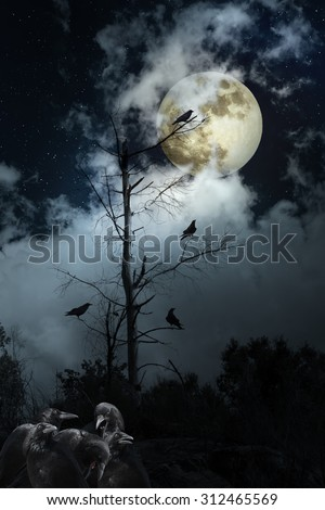 Full moon night with crows - stock photo