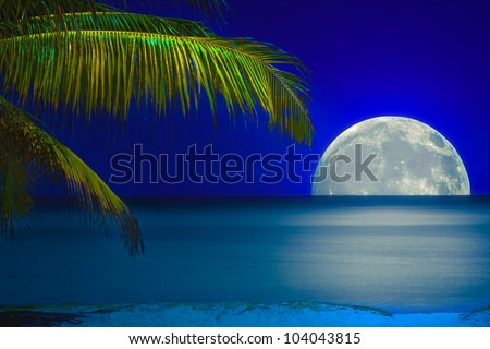 Full moon reflected on the calm water of a tropical beach - stock photo