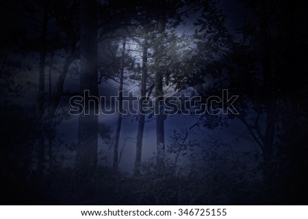 Full moon rises over a forest on a overcast and foggy night - stock photo