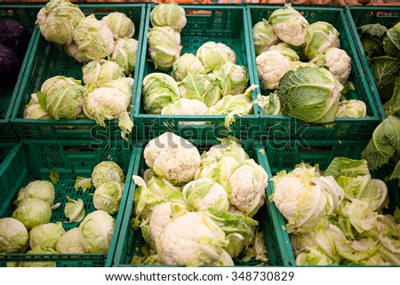 Full shells with cabbage in supermarket. World consumption problem. - stock photo