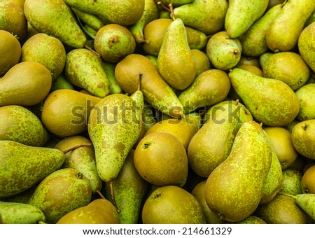 Fullscreen picture of just picked Conference pears in a heap waiting for transportation.