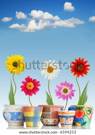 Fun daisies in colorful pots on sky background - stock photo