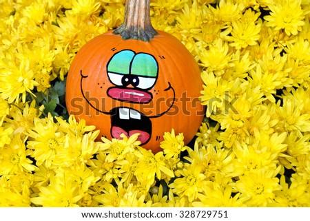 fun face painted on Halloween pumpkin nestled in bright yellow autumn mums - stock photo