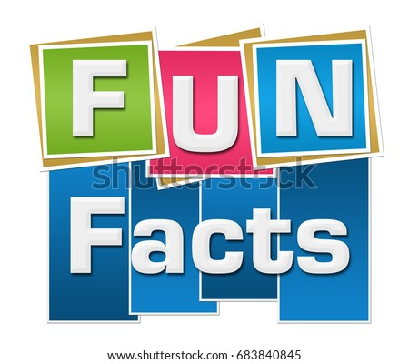 Fact Stock Images Royalty Free Images Amp Vectors